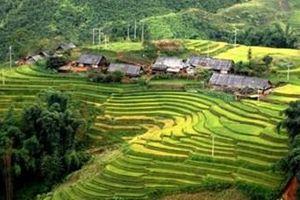 Tăng cường các biện pháp bảo đảm hoạt động du lịch trong dịp Tết Nguyên đán