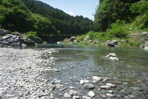 Dòng sông ô nhiễm trở thành điểm du lịch ở Nhật Bản
