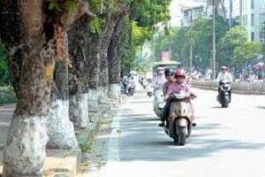 Chất lượng không khí Hà Nội ngày 20/1: Vẫn ở mức xấu, ảnh hưởng đến sức khỏe