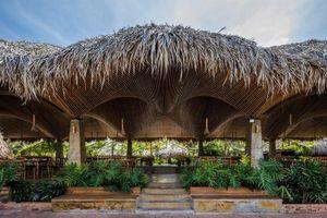 Báo Mỹ hết lời ca tụng nhà hàng mái dừa ở miền Tây