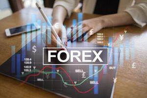 Forex: Thị trường ngoại hối tiềm ẩn đầy rủi ro và phi pháp