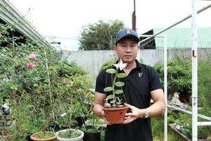 Phạm Thăng Bằng và gia sản lan rừng của chàng trai phố núi