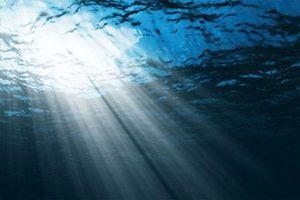 Robot tự động phân tích vi sinh vật trong đại dương