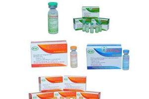 Khởi động thử nghiệm vắc xin phòng COVID-19 thứ 2 của Việt Nam