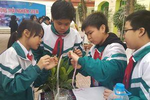 Sôi nổi Ngày hội trải nghiệm hoạt động STEM của học sinh quận Hoàng Mai