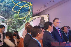 Google Art & Culture tôn vinh Kỳ quan Việt Nam