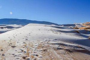 Người dân thích thú tới sa mạc Sahara để... nặn người tuyết