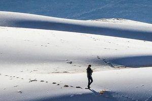 Ngắm cảnh sa mạc Sahara phủ đầy băng tuyết hiếm hoi