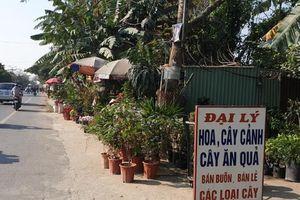 Hải Phòng: Chợ hoa tự phát gây mất an toàn giao thông
