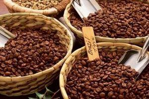 Giá cà phê hôm nay 21/1: Sàn giao dịch đỏ lửa, ngóng kích thích của tân Tổng thống Mỹ; Giá hồ tiêu tiếp tục lặng sóng