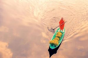 3 bài học thành công từ người thân tín của Đức Đạt Lai Lạt Ma