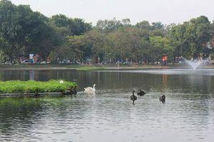 Ý tưởng tổ chức phố đi bộ Hồ Thiền Quang gắn với Công viên thống nhất