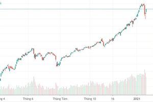 Sắc xanh áp đảo, VN-Index tăng gần 30 điểm