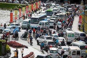 Đà Lạt lắp đặt đèn giao thông: Phải hy sinh nét văn hóa riêng vì du khách ngày càng đông?