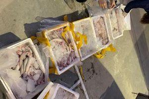 Mua 250 kg cá khoai ướp phóc môn bán ra chợ kiếm lời