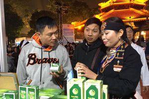 Khai mạc Ngày hội văn hóa, du lịch tỉnh Hòa Bình tại Hà Nội