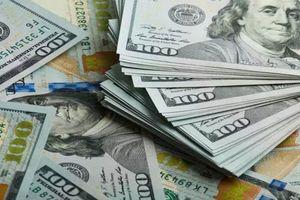 Tỷ giá USD hôm nay 22/1: Chính quyền ông Biden hứa hẹn bơm thêm tiền, đồng bạc xanh sụt giảm