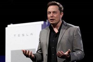 Tỷ phú Elon Musk tài trợ 100 triệu USD cho cuộc thi về môi trường