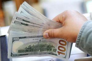 Tỷ giá USD hôm nay 22/1/2021: Đồng bạc xanh trượt giá ngày thứ 3