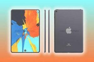 Lộ hình ảnh iPad mini 6 với màn hình đục lỗ và cảm biến vân tay dưới màn hình