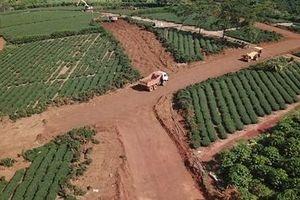 Giao Công an làm rõ những 'dự án bất động sản' ở Bảo Lộc