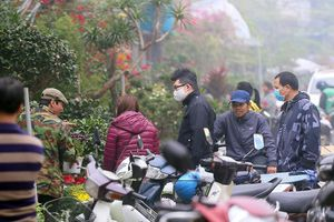 Người dân Hà Nội 'tranh nhau' mua cây cảnh ở chợ hoa Vạn Phúc