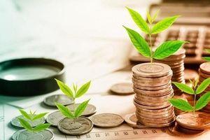 Phát hành thành công trái phiếu doanh nghiệp riêng lẻ hơn 43 nghìn tỷ đồng