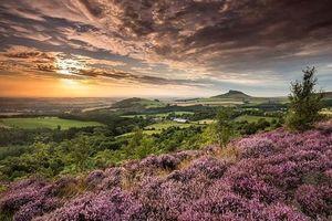 Khám phá những công viên quốc gia nổi tiếng nhất nước Anh
