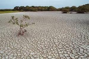 Nghiên cứu thông tin về tình trạng khan hiếm nước gia tăng