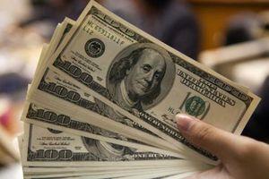 Tỷ giá USD hôm nay 25/1: Tổng thống Joe Biden ký 2 sắc lệnh cứu trợ kinh tế, USD tăng nhẹ