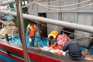 Cứu nạn các thuyền viên bị nạn trên biển Nghệ An