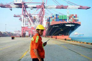Khủng hoảng vỏ container đẩy cước vận tải biển tăng 300%