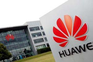 Huawei được cho là đang đàm phán để bán thương hiệu smartphone P và Mate, rút khỏi ngành ĐTDĐ?