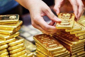 Giá vàng trong nước ngày 25/1 giảm 100.000 đồng/lượng, ít hơn hẳn mức giảm của giá vàng thế giới