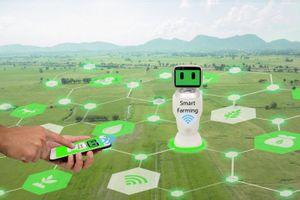 Một số chính sách và giải pháp phát triển nông nghiệp công nghệ cao ở Thành phố Hà Nội