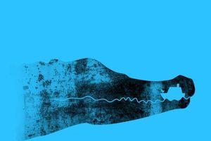 Trắc nghiệm vui đoán tính cách: Bạn nhìn thấy con thuyền hay cá sấu?