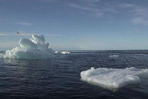 Lượng băng toàn cầu đang tan với tốc độ kỷ lục