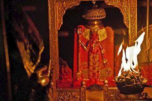 Kinh dị đền thờ ở Ấn Độ cho hơn 20.000 con chuột sống tự do