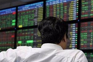 Thị trường chứng khoán 26/1: Cổ phiếu 'nhuốm đỏ', VN-Index mất gần 30 điểm