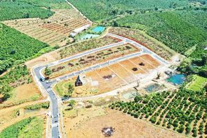Lâm Đồng ra quy định mới về tách thửa đất