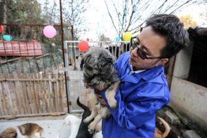 Cứu 10.000 chó, mèo trong một năm dịch bệnh ở Vũ Hán