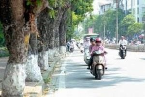 Chất lượng không khí Hà Nội ngày 27/1: Đã có sự cải thiện