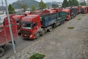 Xe thùng rỗng vây cửa khẩu Kim Thành