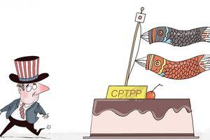 Nhật Bản - 'Người gác cổng' cần mẫn của CPTPP