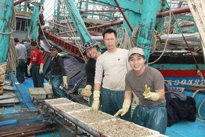 Ngư dân Nghệ An trúng đậm cá trỏng phục vụ thị trường Tết