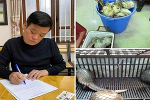 Khởi tố chủ nhà hàng 'Đệ nhất Văn Quán' vì nuôi nhốt, cấp đông 17 cá thể tê tê