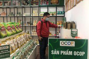 Hà Nội phân hạng 424 sản phẩm OCOP