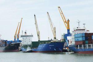Kiến nghị thanh tra, kiểm tra việc tăng giá cước vận tải biển