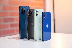 iPhone 12, iPhone 12 Pro Max giảm giá mạnh tại Việt Nam dịp cuối năm