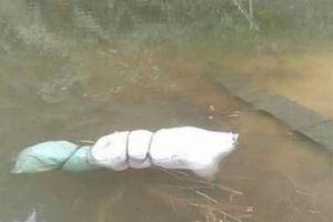 Thi thể phụ nữ bị nhét vào bao tải nổi ở mặt hồ Sơn La: Tìm danh tính nạn nhân